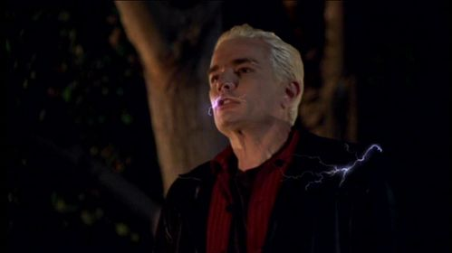 True o False: The Initiative captures Spike at the end of the episode 'Wild at Heart'.