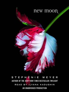 At the start of New Moon, whose relationship was in the post breakup stage?