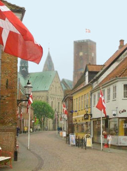 What city is known as the oldest Danish city?