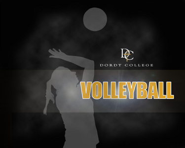 What does a blocker do in volleyball?