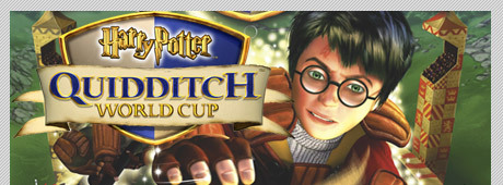 At the Quidditch World Cup, Fred and George bet all their money with Ludo Bagman.  How much did they bet?