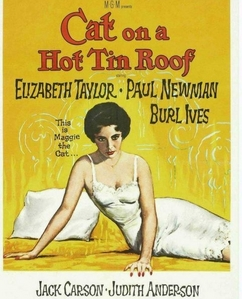"Which famous playwright wrote ""Cat On A Hot Tin Roof?"""