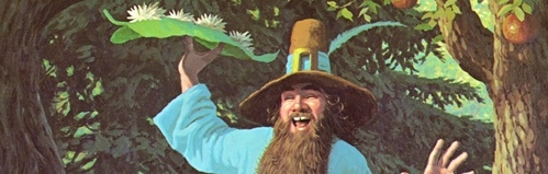 What color were Tom Bombadil's boots?