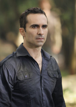 Who is the actor of Richard Alpert?