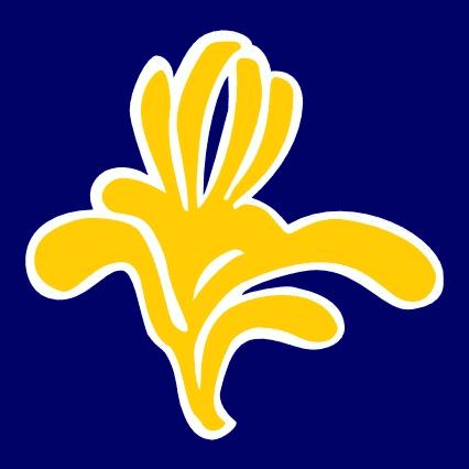 Yellow Iris is a symbol of ...