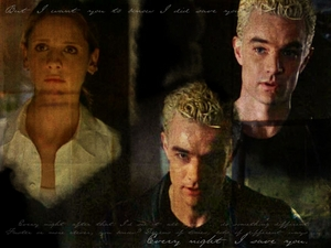 "Every Night I Tried To Save You, Spike & Buffy ""AfterLife"""