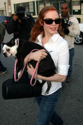 Rose takes her dog to her hairdresser in Beverly Hills.