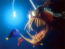 The Anglerfish - Finding Nemo