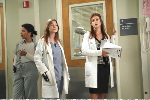 addison and meredith