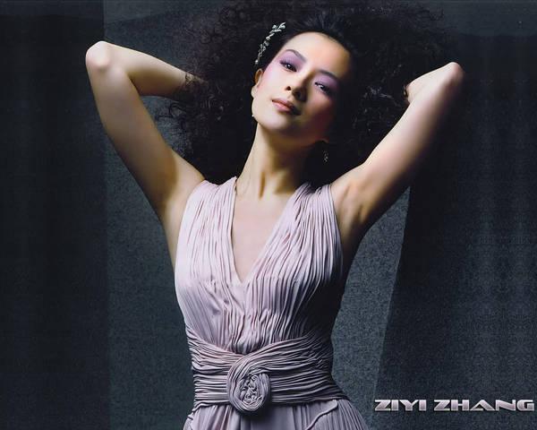 http://images1.fanpop.com/images/image_uploads/zhang-ziyi-zhang-ziyi-1151242_600_480.jpg