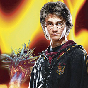 Harry and the dragon
