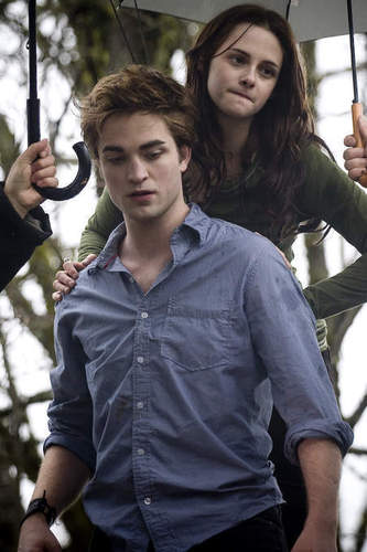 Edward Cullen and Bella سوان, ہنس